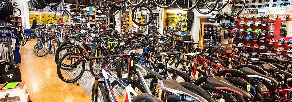 frühling fahrrad